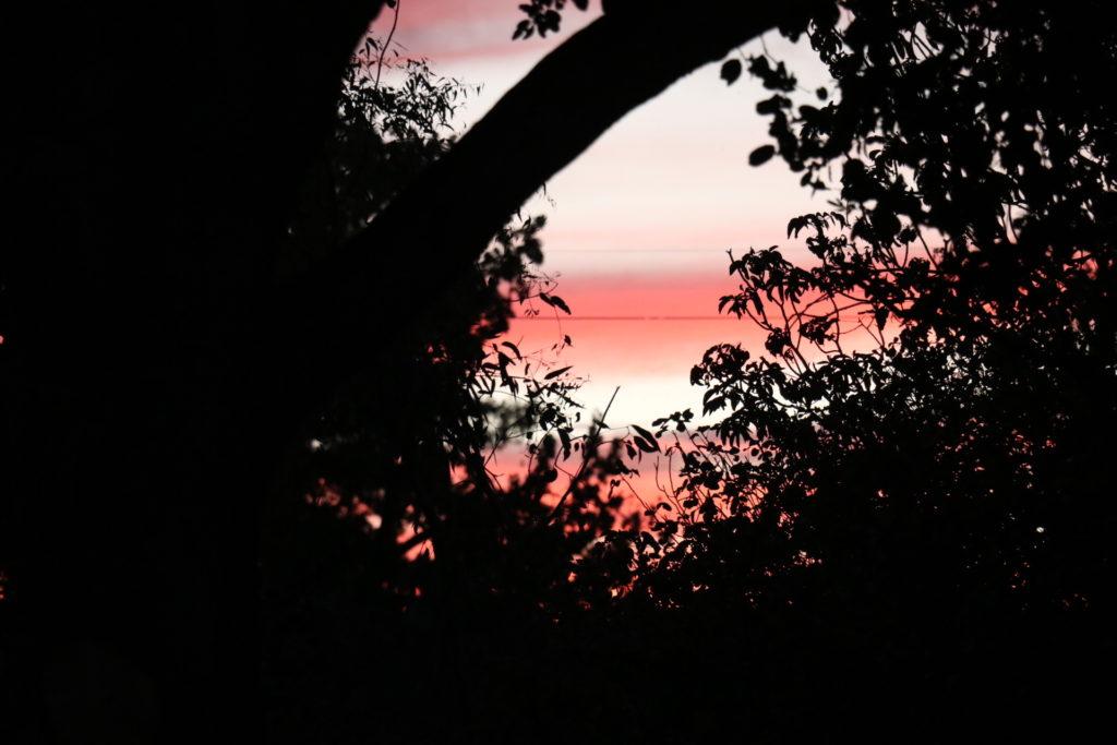 パロアルトの夕日