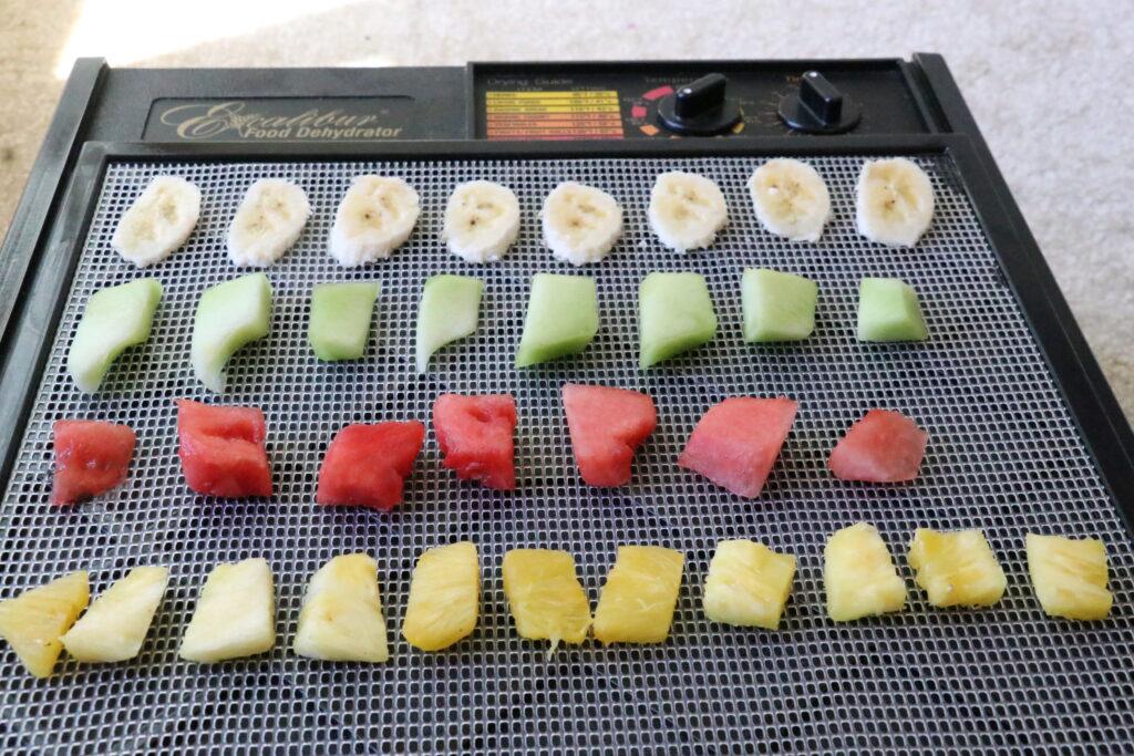 食品乾燥機、ドライフード作り、バックパッキング、フードディハイドレーター、フルーツ、バナナ、メロン、スイカ、パイナップル