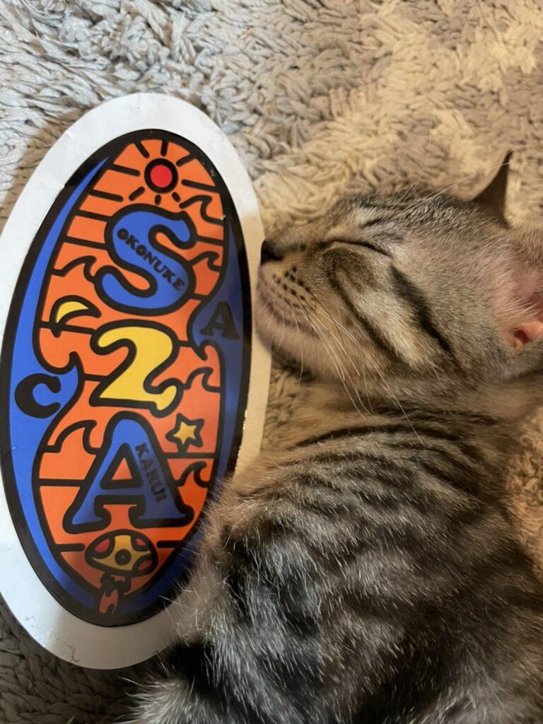 サバトラ猫、ニャンスタグラム、猫、 保護猫、レム睡眠